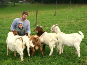 gruenland-spessart-erzeuger-familie-faeth