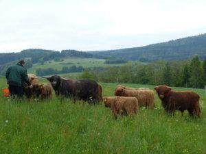 gruenland-spessart-erzeuger-herbert-stephan